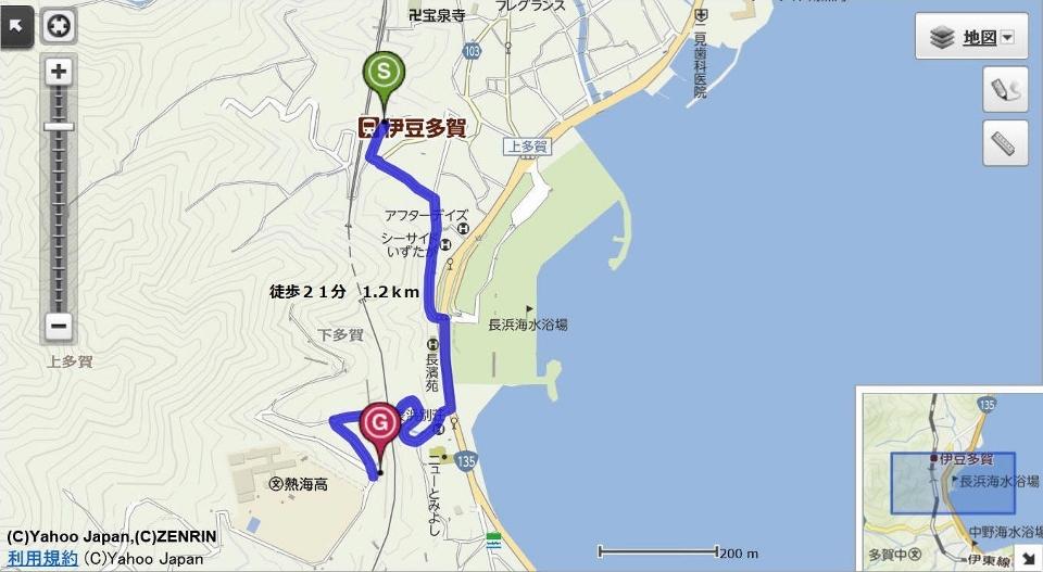 02ヒマラヤ桜原木 (960x527)