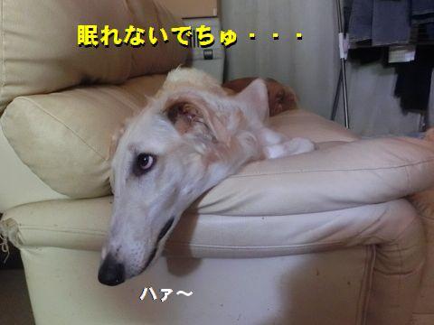 b_20151101012002422.jpg
