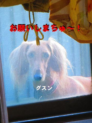 d_20151019000110182.jpg