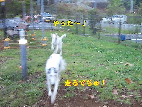 f_201509242117114a7.jpg