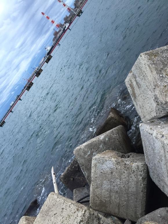 鹿島港 釣り
