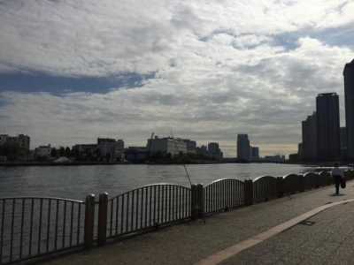 東京湾 隅田川 釣り