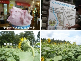 0811siobarahimaw6.jpg