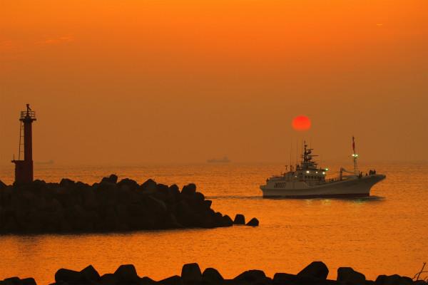 久礼のカツオ船入港