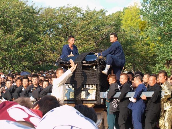 松山秋祭り 石手川緑地 神輿鉢合わせ