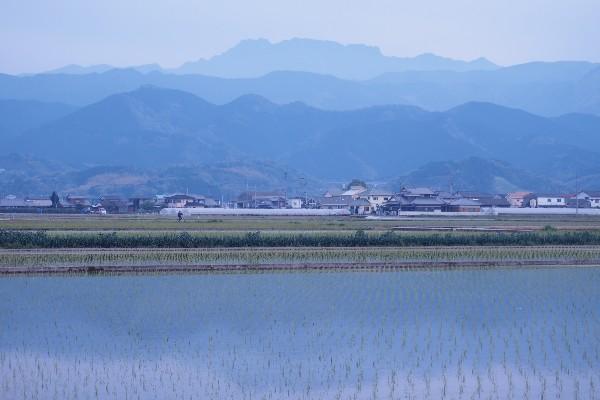 西条市 田植えの風景 石鎚の山