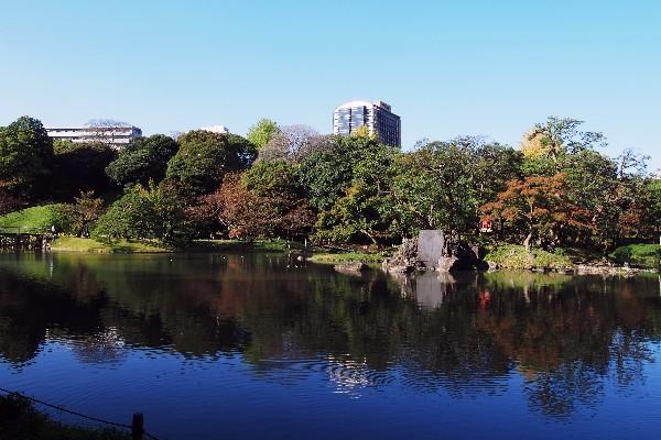 小石川後楽園  随所に中国の名所を名づけた景勝を配し、中国趣味豊かなものとなっています