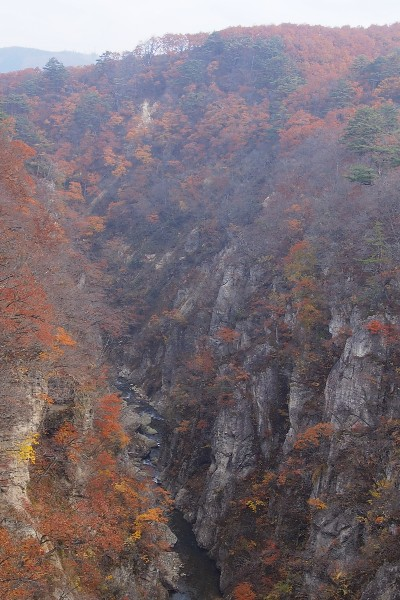 錦秋の鳴子峡 大谷川が刻むV字峡