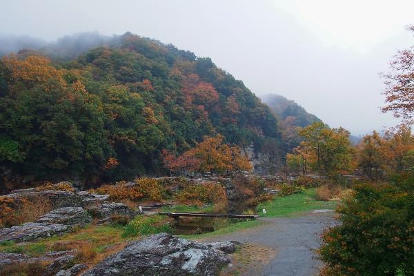 岩畳の渓谷美とライン下りの長瀞