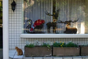 Cat and Christmas window