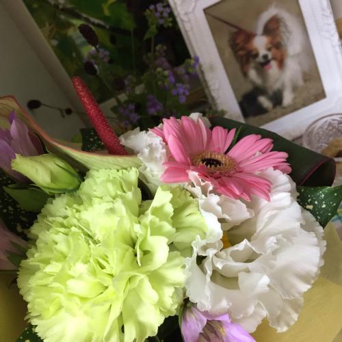 お友達がサリーに花束を持ってきてくれました