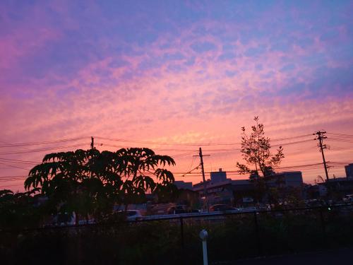 やっぱり夕日スキだな~~~