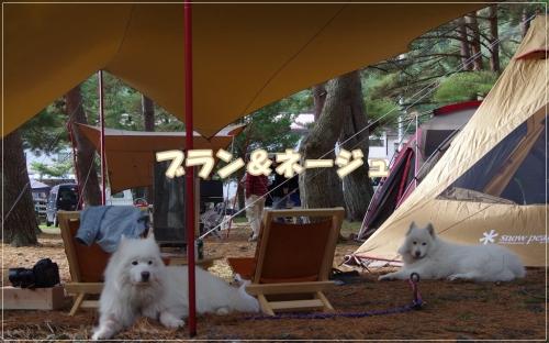 IMGP7469.jpg