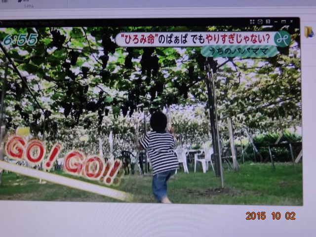 DSC01918_20151002225215219.jpg