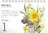 本田尚子カレンダー0201