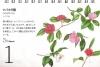 本田尚子カレンダー0301