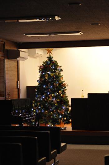 tree201512-8.jpg