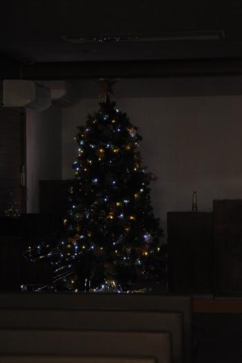 tree201512-8c.jpg
