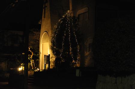 tree201512-9.jpg