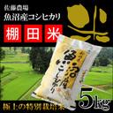 棚田米 5キロ