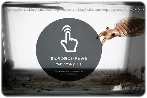 sayomaru14-903.jpg