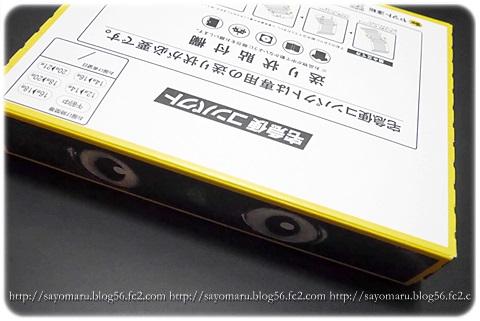 sayomaru14-937.jpg