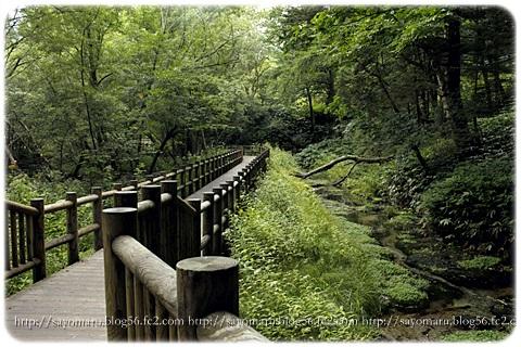 sayomaru14-944.jpg