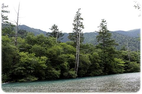 sayomaru14-953.jpg