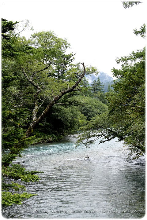 sayomaru14-954.jpg