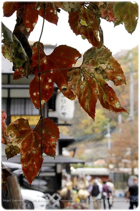 sayomaru15-391.jpg