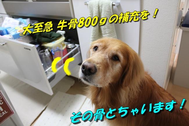 白い巨塔キッチン 022