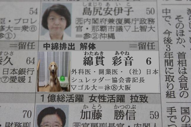 プールと新聞 126