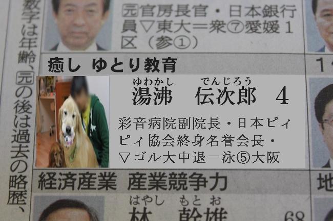 プールと新聞 128