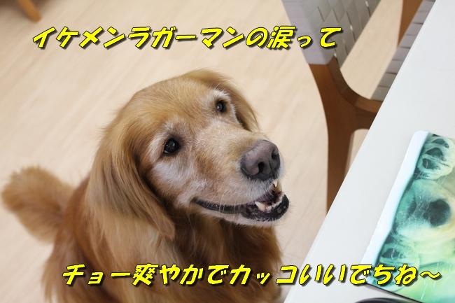 五郎丸インタビュー 010