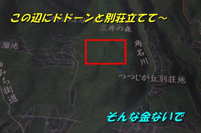 睡眠地図矢沢 023