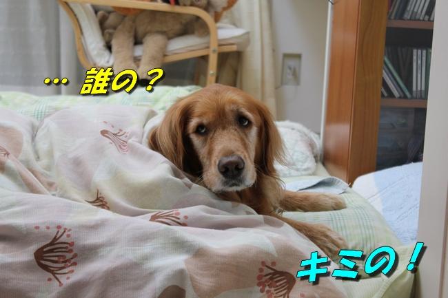 睡眠地図矢沢 004