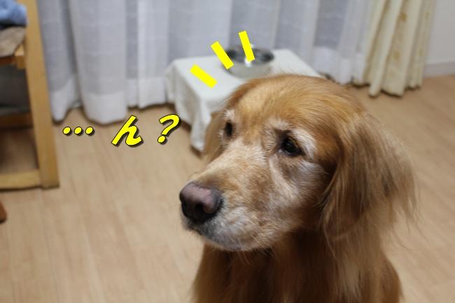 プール&旭化成謝罪 156