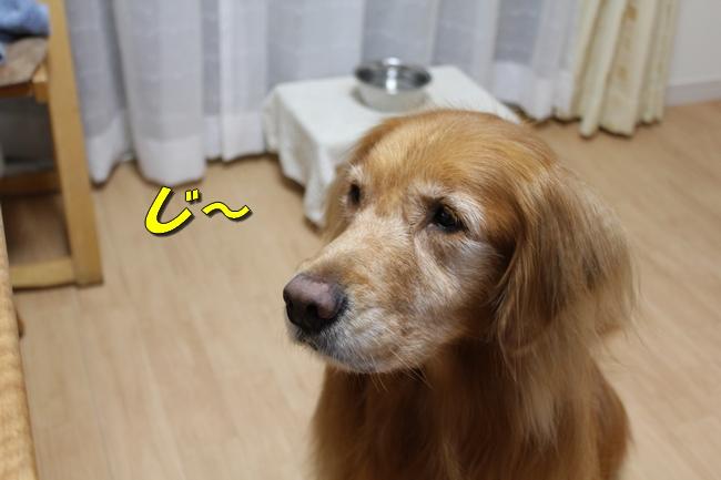 プール&旭化成謝罪 157