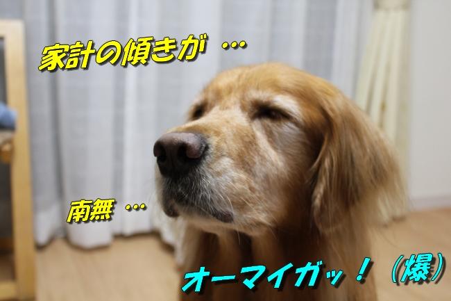 プール&旭化成謝罪 165
