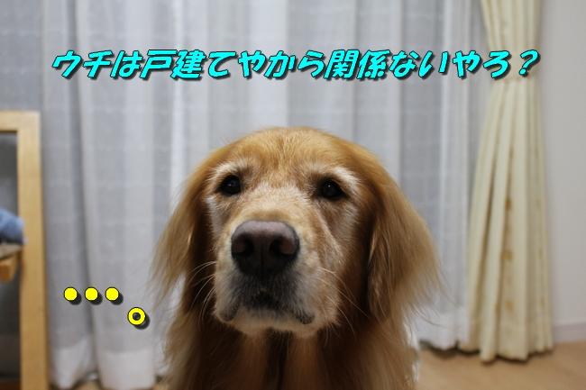 プール&旭化成謝罪 168