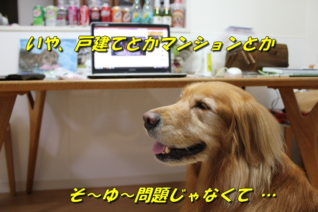 プール&旭化成謝罪 186