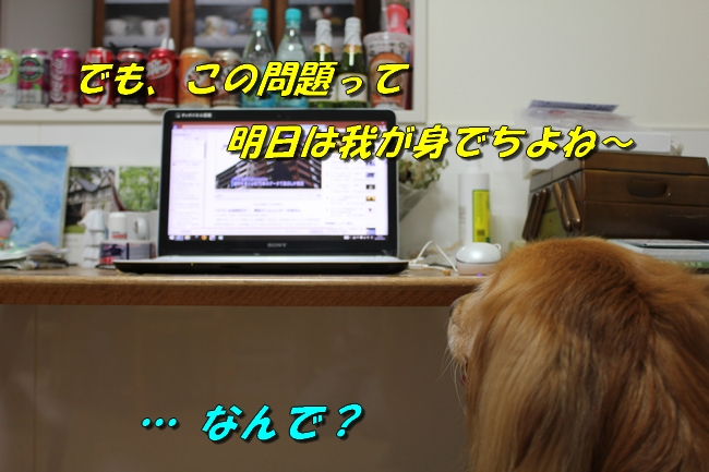 プール&旭化成謝罪 194