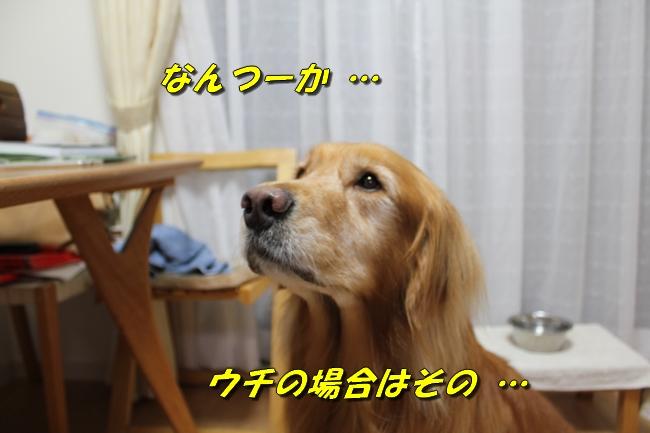 プール&旭化成謝罪 202