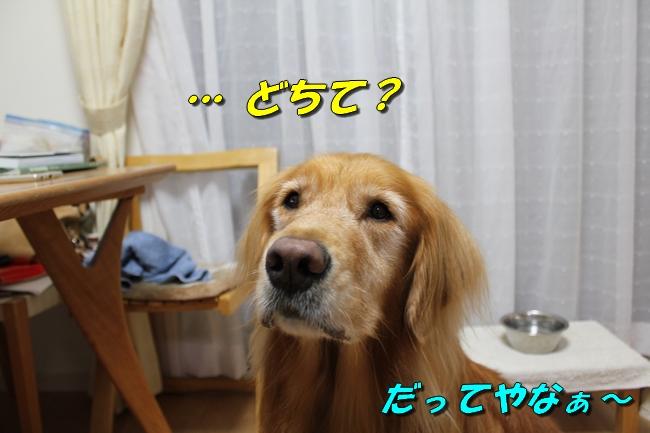 プール&旭化成謝罪 203