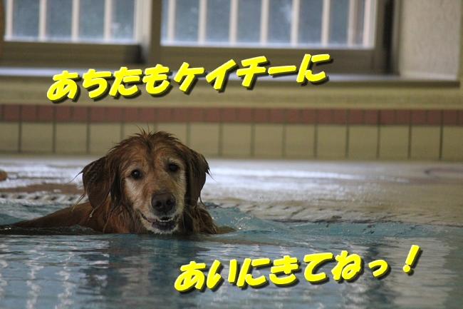 プール&旭化成謝罪 063