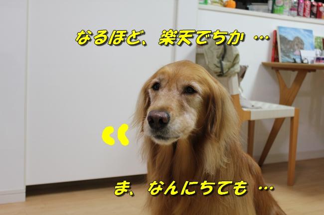 ドラフトオコエ 009