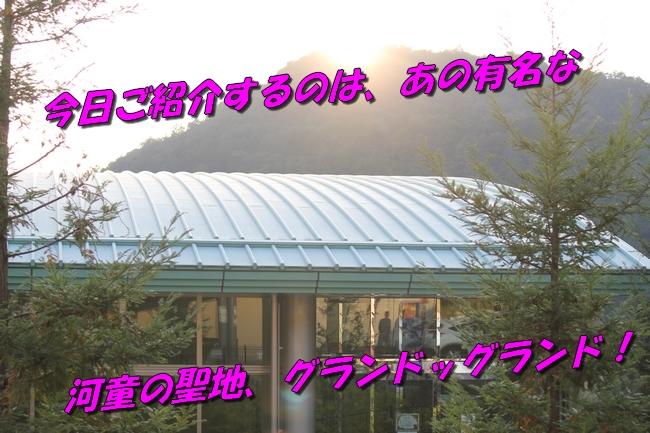 プール&旭化成謝罪 114