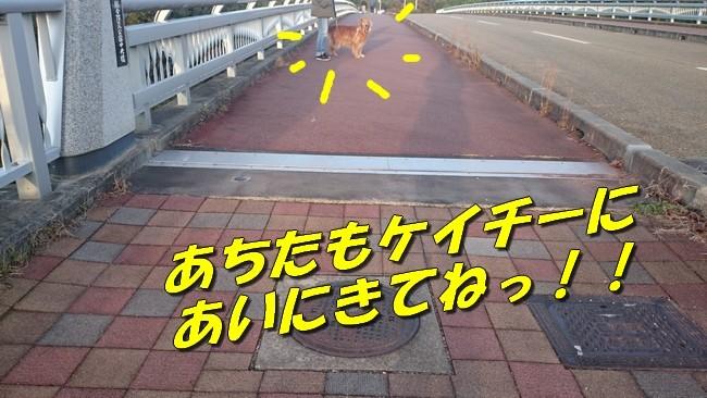 DSC_4196 ブログ用