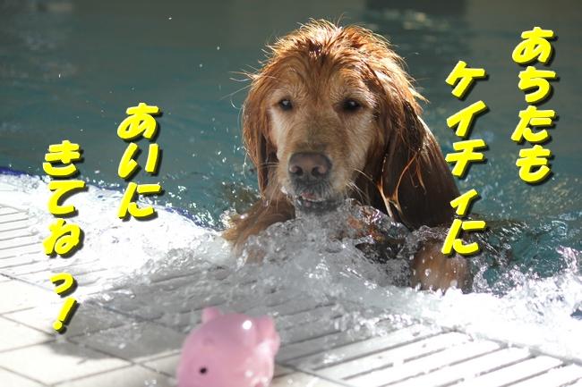 1111お水の日 026