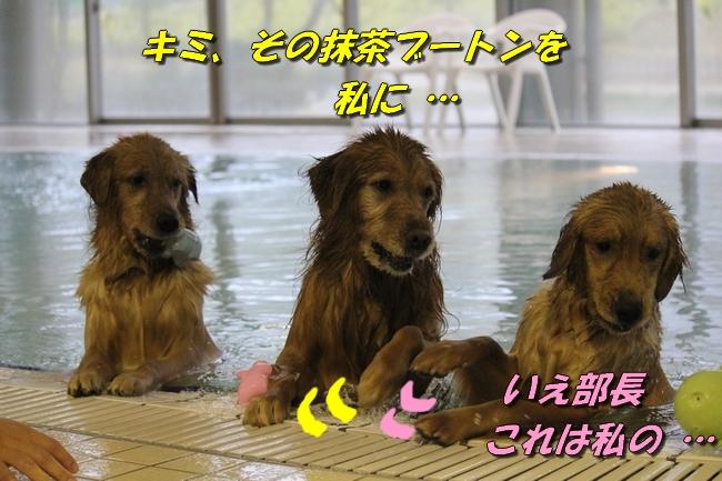 さくら&こなつ 099